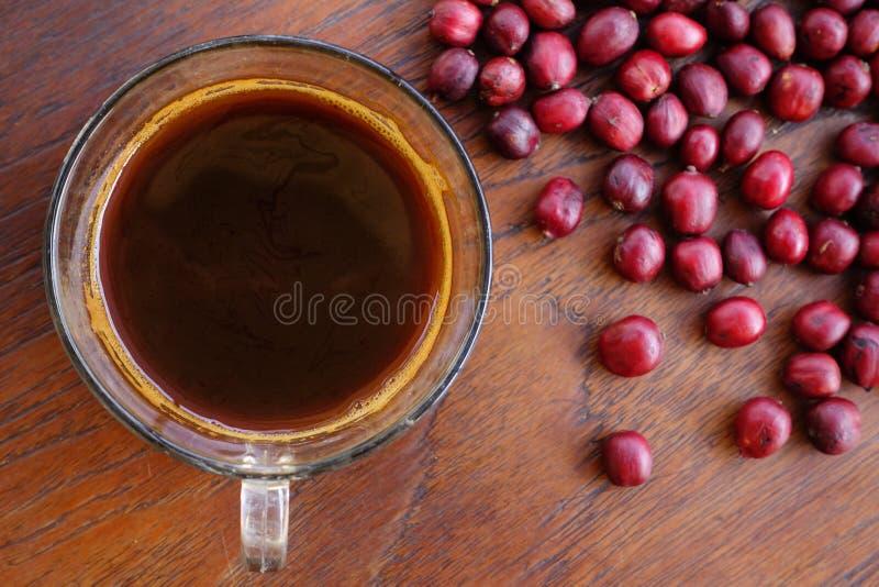 Copo de café e feijões frescos das bagas fotografia de stock royalty free