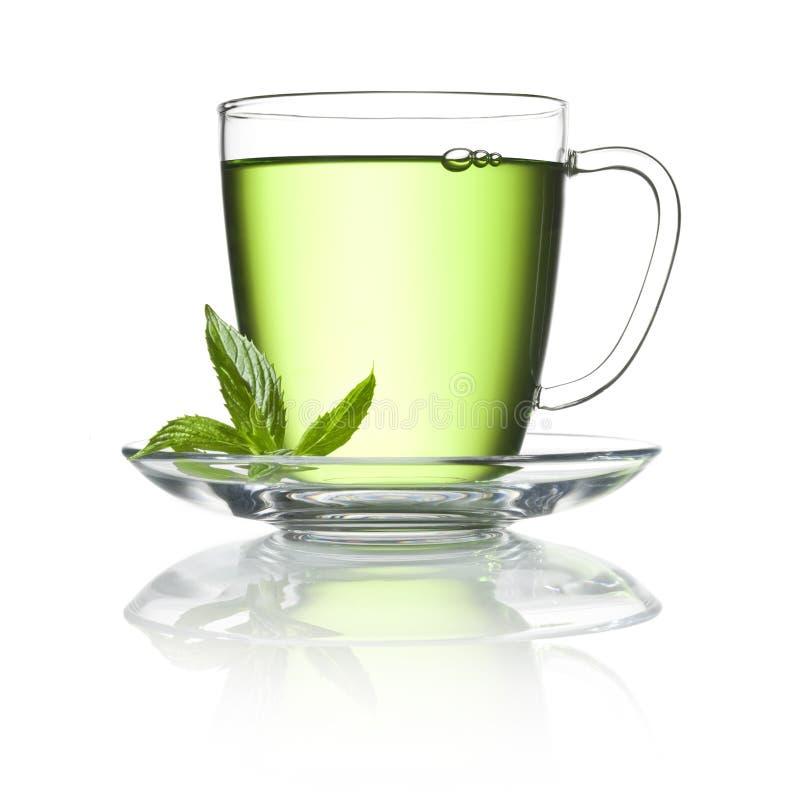 Copo de chá verde da pastilha de hortelã fotografia de stock