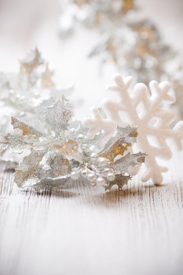 Copo de nieve. fotografía de archivo libre de regalías