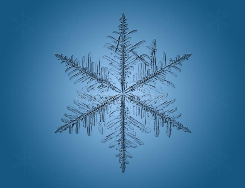 Copo de nieve macro en azul ilustración del vector