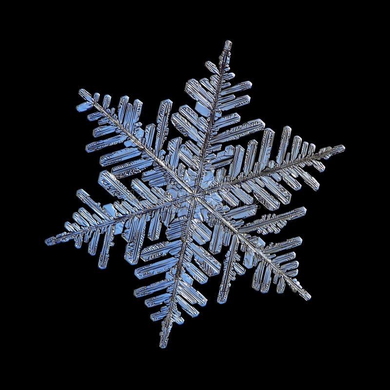Copo de nieve real aislado en fondo negro fotografía de archivo libre de regalías