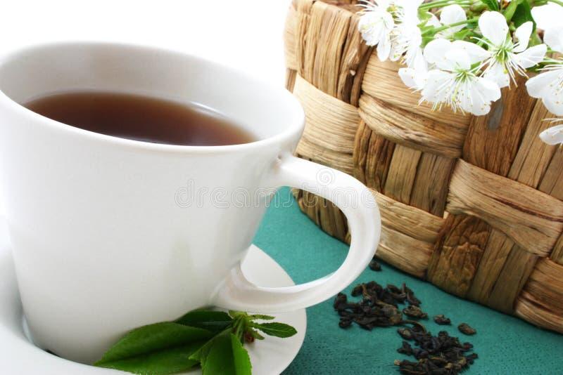 Copo de relaxamento do chá fotografia de stock