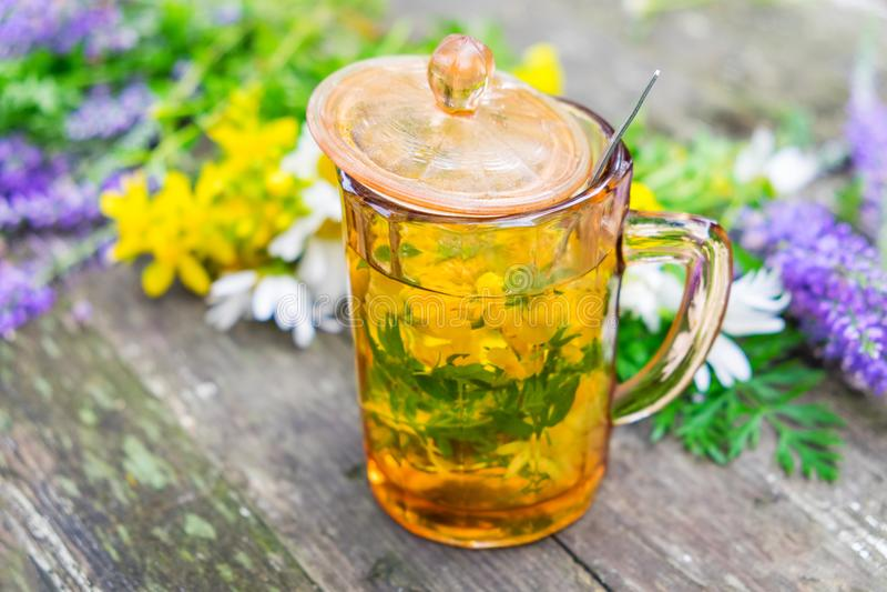 Copo de tisana saudável e grupos medicinais das ervas fotografia de stock royalty free