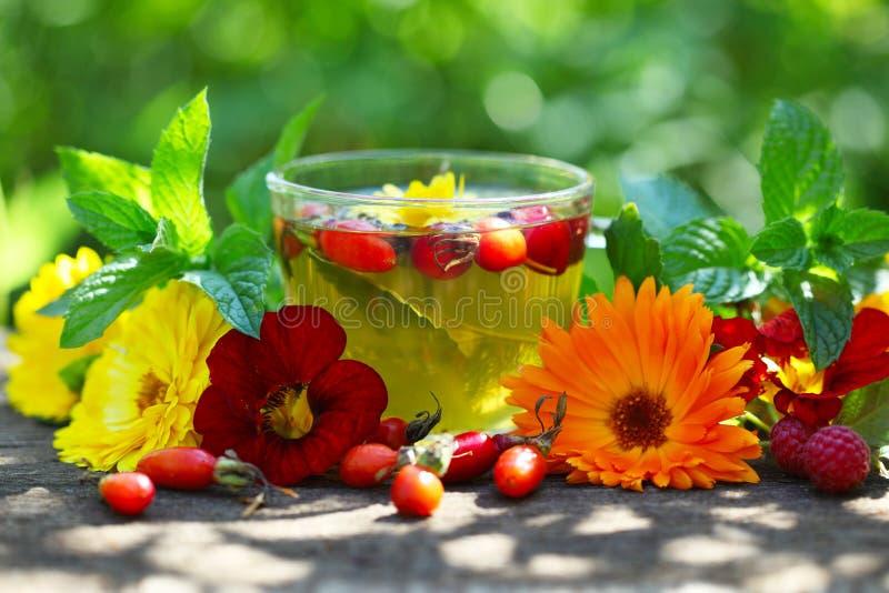 Copo de vidro com chá erval foto de stock