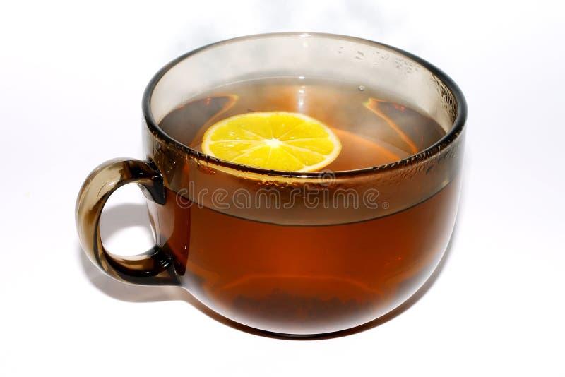Copo do chá. imagens de stock