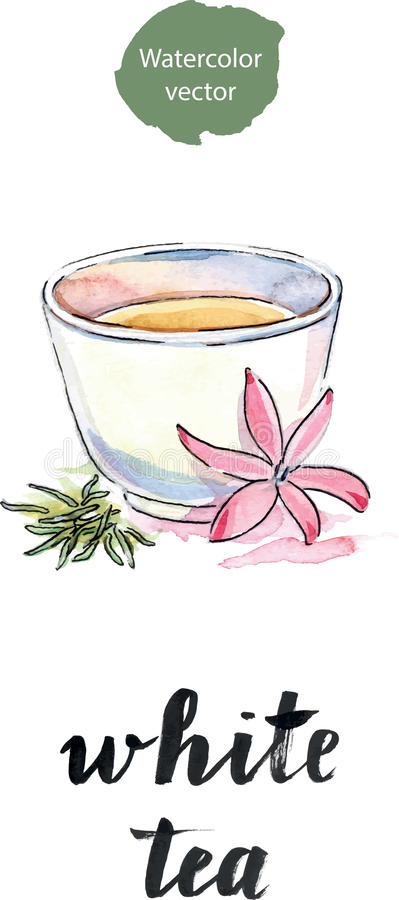 Copo do chá com chá da flor e das pétalas ilustração do vetor