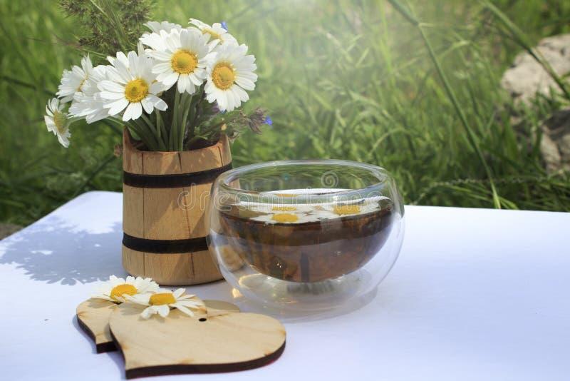 Copo do chá de camomila em um fundo do wite foto de stock