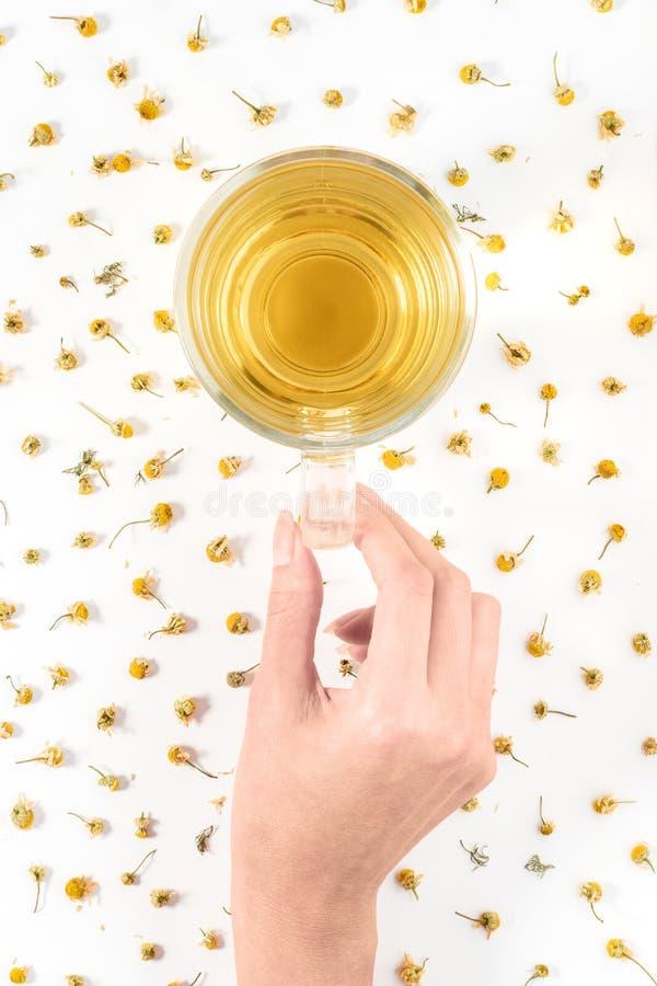 Copo do chá de camomila erval com as flores secas da camomila imagens de stock royalty free