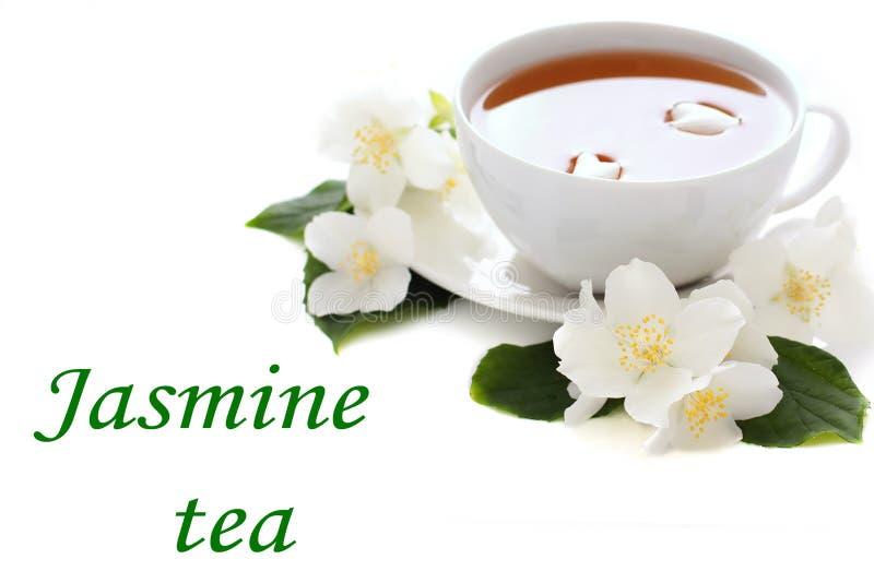 Copo do chá do jasmim foto de stock