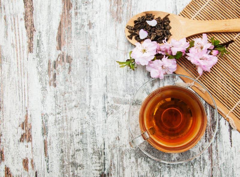 Copo do chá e da flor de sakura imagens de stock