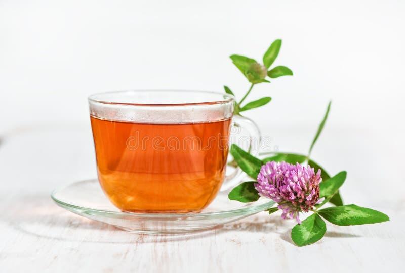 Copo do chá e ramo do trevo imagens de stock