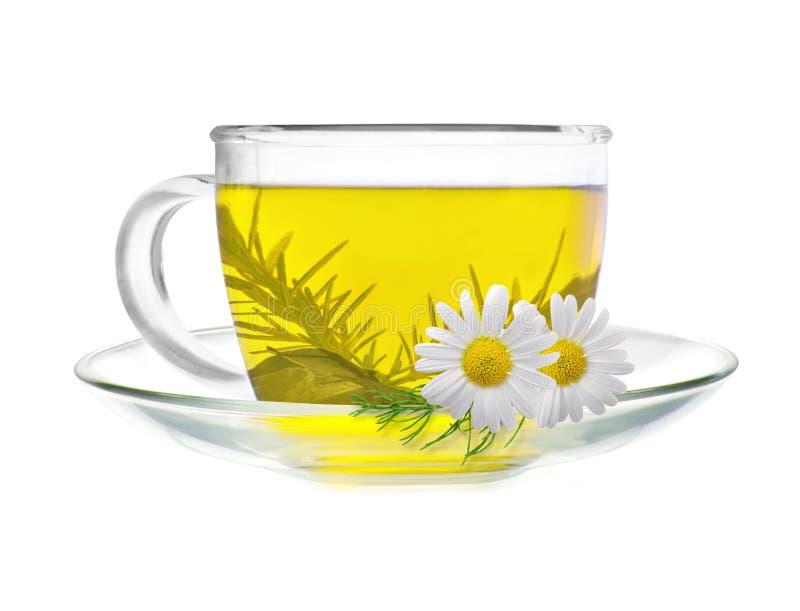 Copo do chá verde com flores da camomila imagem de stock royalty free