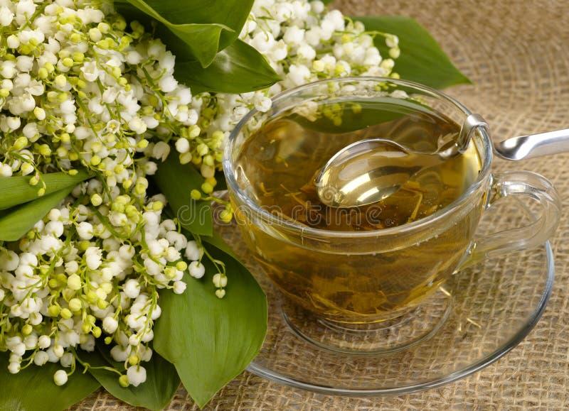 Copo do chá verde no hessian fotografia de stock royalty free