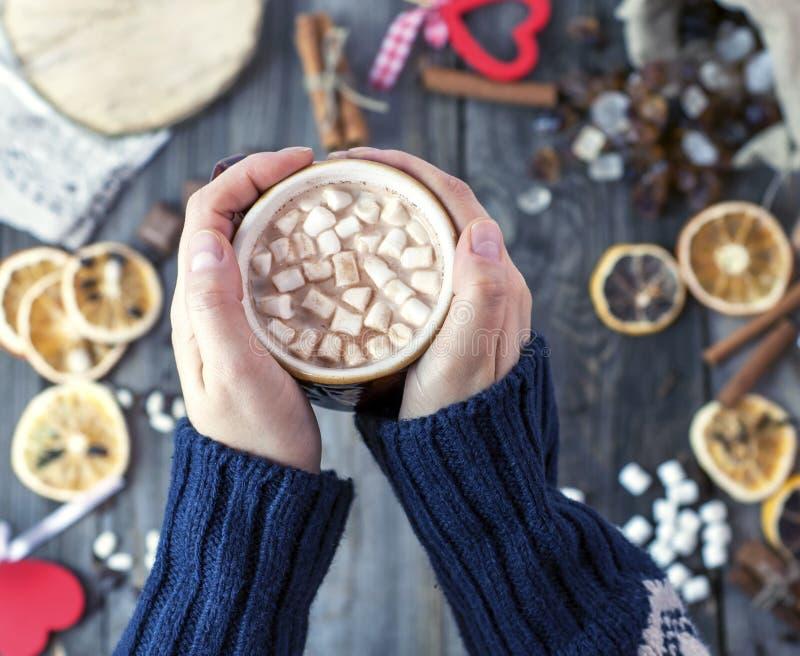 Copo do chocolate quente com marshmallow foto de stock