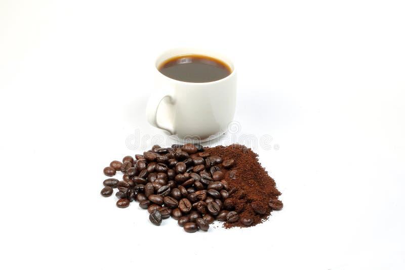 Copo inteiro de Bean Roasted Fresh do café imagem de stock