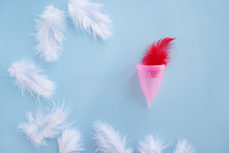 Copo menstrual com as penas no fundo da cor foto de stock royalty free