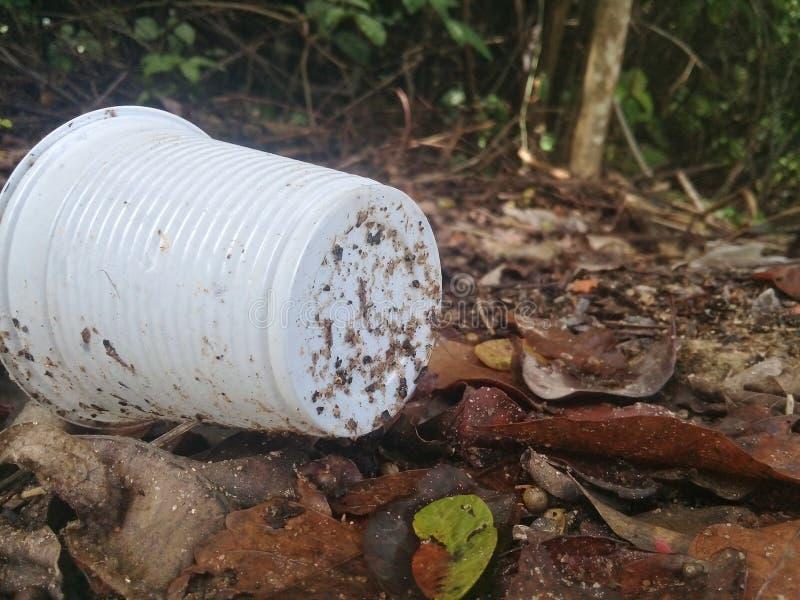 Copo plástico e a poluição em manguezais imagens de stock