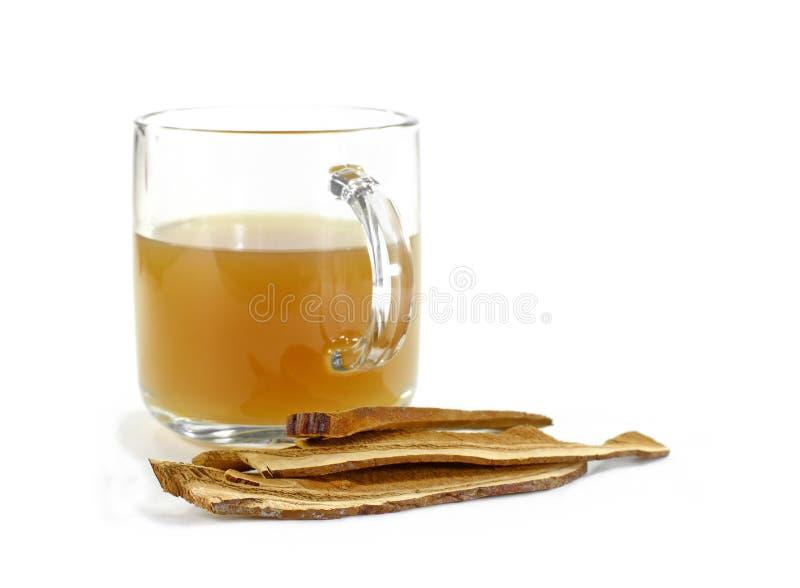 Copo transparente com chá de Reishi Cogumelo secado do lingzhi igualmente chamado como o cogumelo de Reishi em Japão, Lingcheu em fotografia de stock royalty free