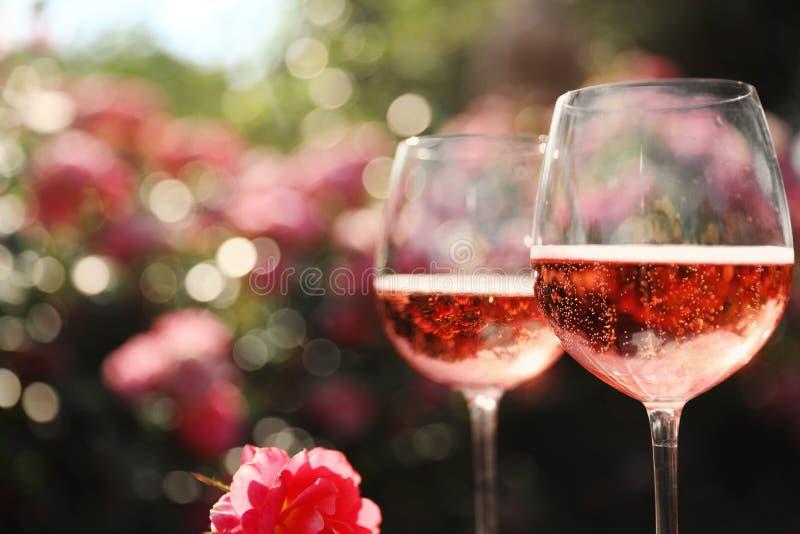 Copos de champanhe de rosa no jardim florescente, vestidos foto de stock royalty free