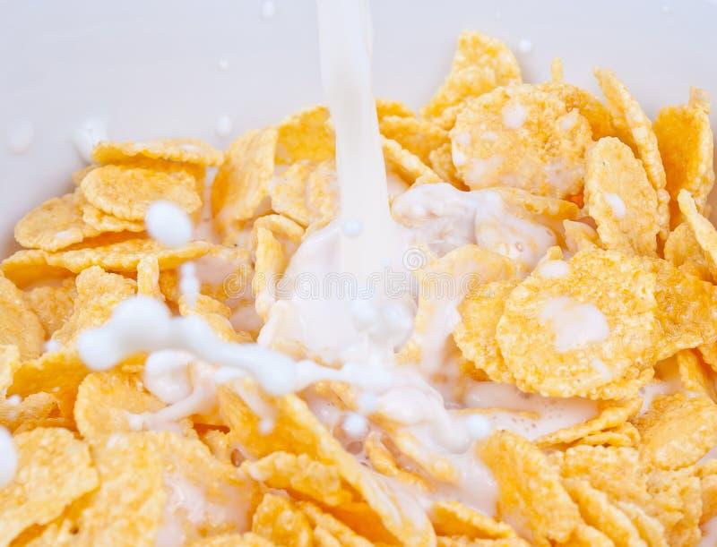 Copos de maíz y leche imágenes de archivo libres de regalías