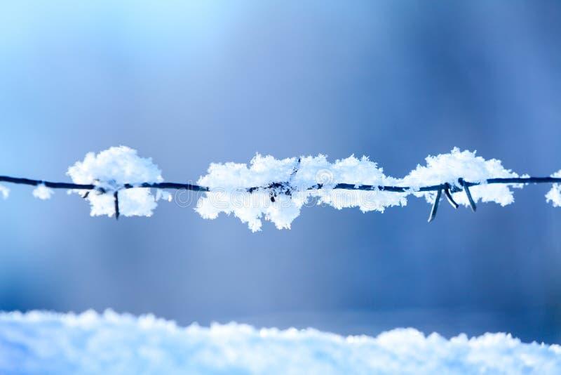 Copos de nieve en un alambre de púas contra fondo del cielo azul en la estación del invierno fotografía de archivo