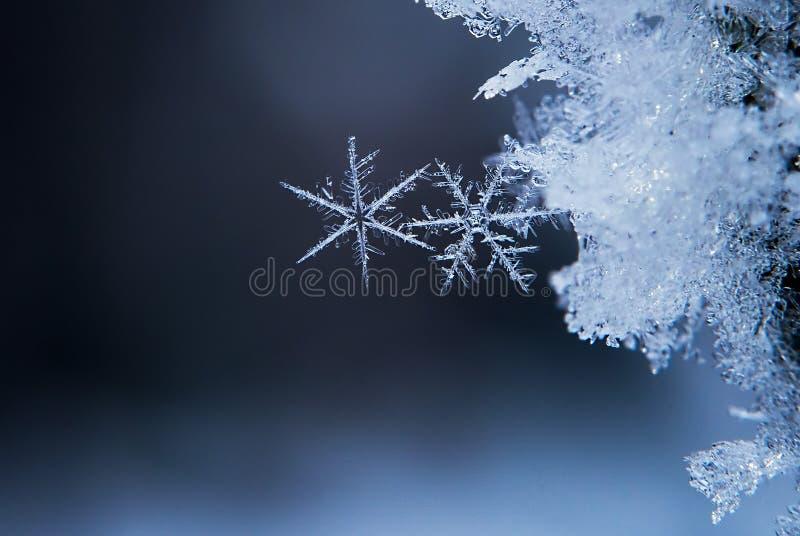 Copos de nieve foto Foto macra de la naturaleza imagenes de archivo