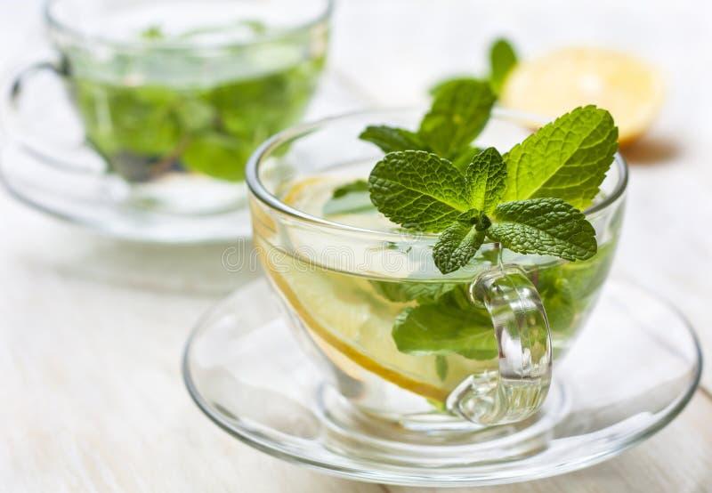 Copos do chá com hortelã fresca e limão fotografia de stock
