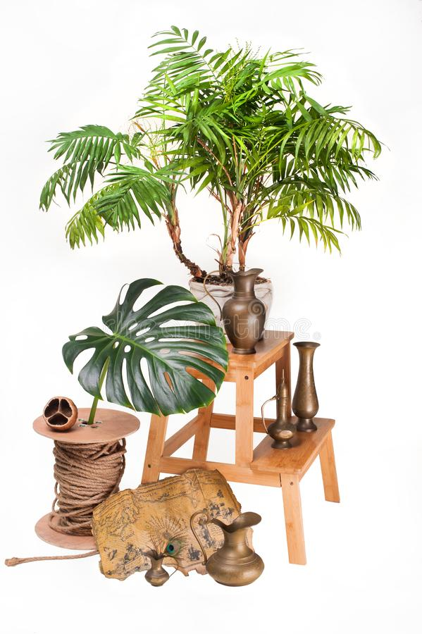 Copper vase with map of treasure and leaves Monstera on white isolated with patch stock images