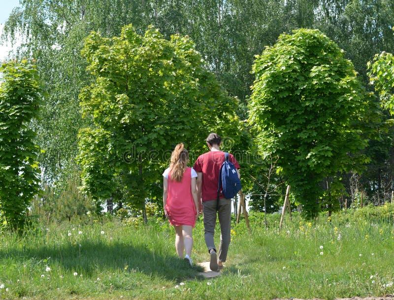 Coppia il paesaggio dell'estate di verde della passeggiata nella città Bielorussia di Minsk immagini stock