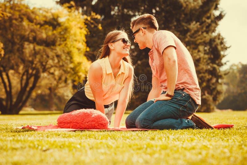 Coppie affettuose allegre sul picnic fotografie stock