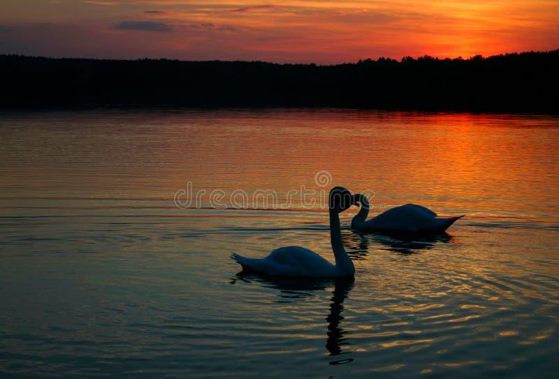 Coppie amorose #2 fotografie stock libere da diritti