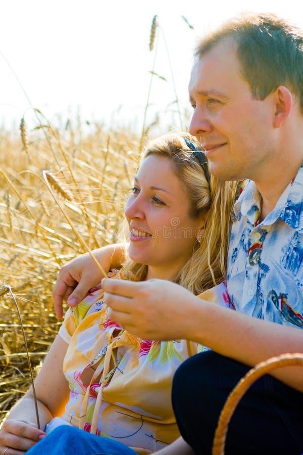 Coppie amorose attraenti nel campo di frumento immagine stock libera da diritti