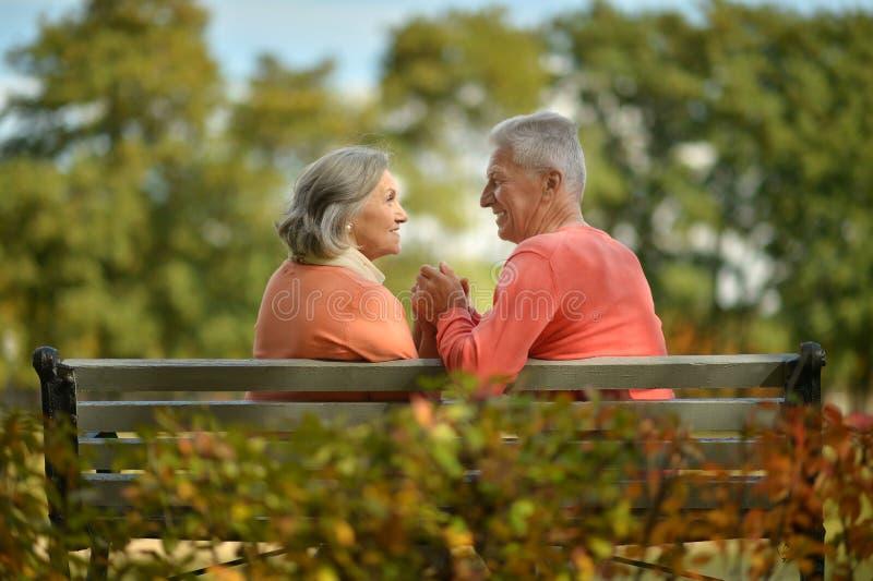 Coppie anziane felici che si siedono sul banco immagini stock