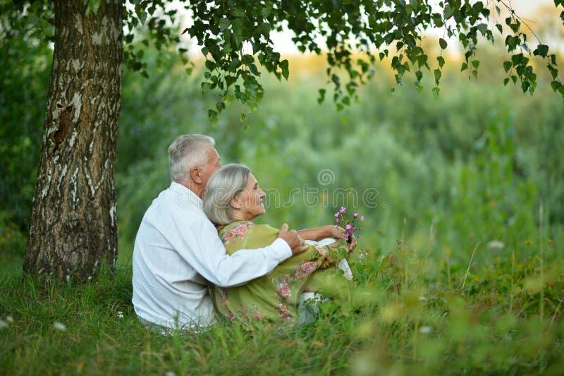Coppie anziane sulla natura ad estate fotografia stock libera da diritti