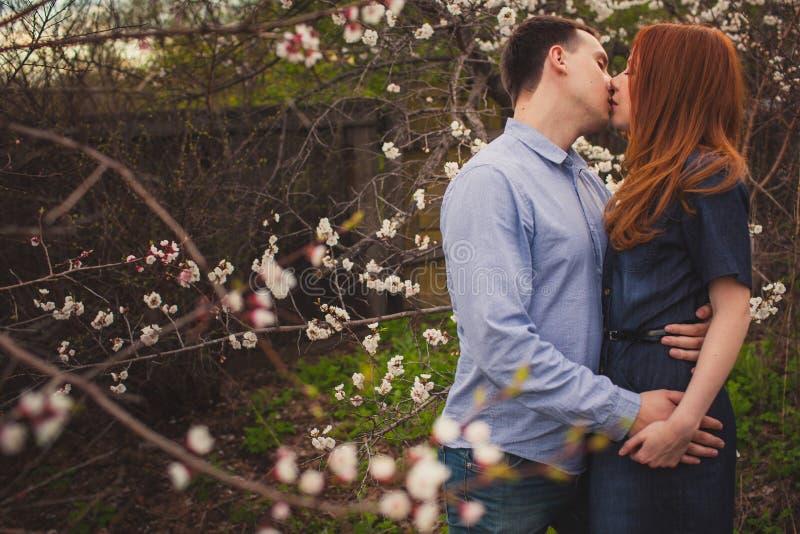 Coppie che baciano fra gli alberi di fioritura fotografia stock libera da diritti