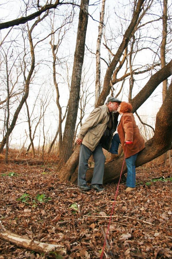 Coppie che baciano nel legno immagini stock