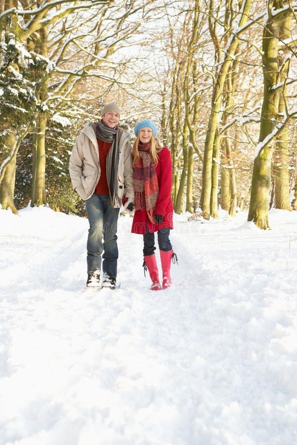 Coppie che camminano attraverso il terreno boscoso dello Snowy immagine stock libera da diritti