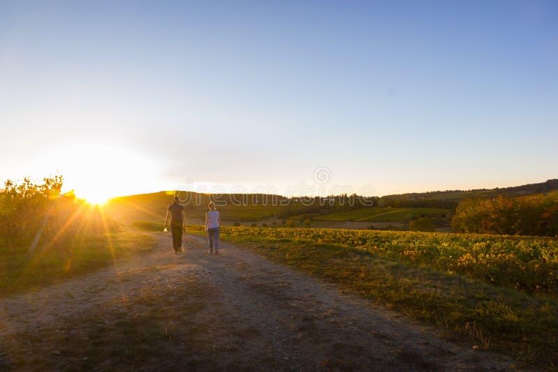 Coppie che camminano sopra la vigna francese fotografia stock libera da diritti