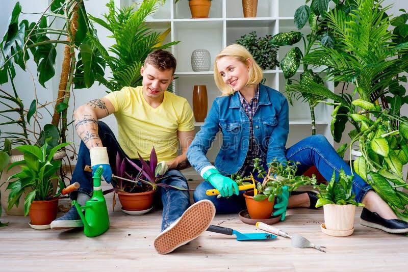 Coppie che fanno il giardinaggio insieme fotografie stock libere da diritti