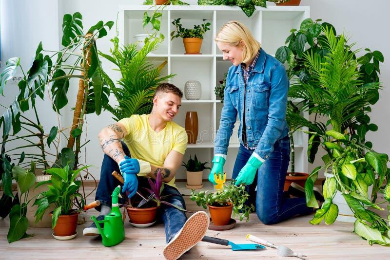 Coppie che fanno il giardinaggio insieme fotografie stock