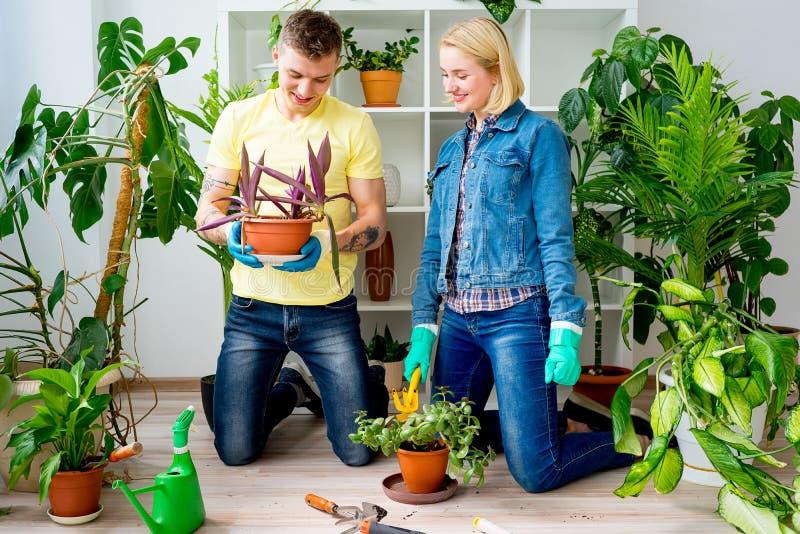 Coppie che fanno il giardinaggio insieme fotografia stock