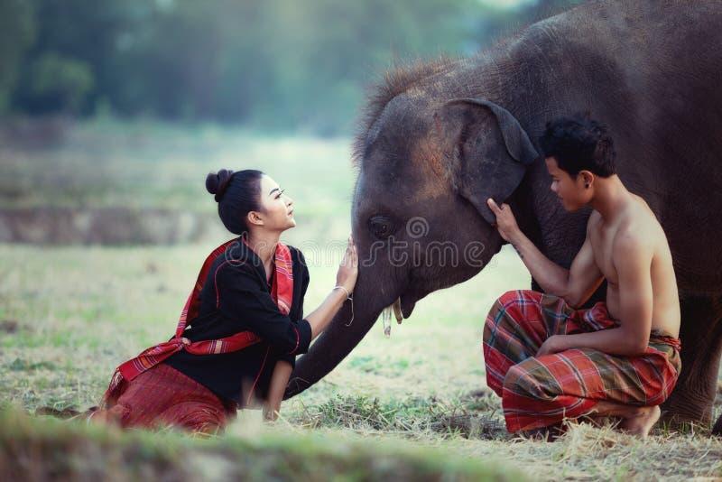 Coppie che godono con i giovani di stili di vita dell'elefante in Surin fotografia stock
