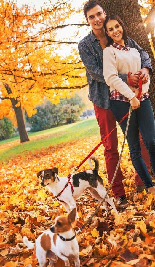 Coppie con due piccoli cani sulla passeggiata in parco fotografia stock libera da diritti
