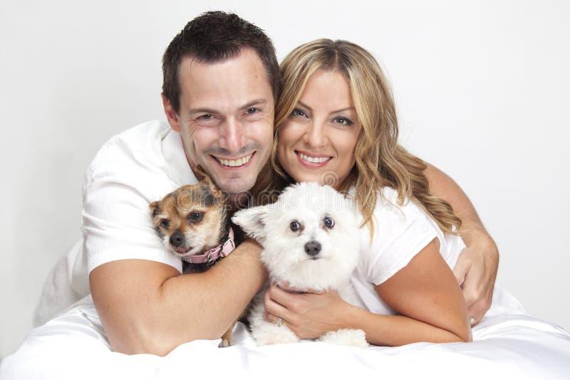 Coppie con i cani di animale domestico fotografia stock