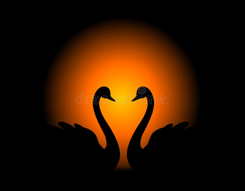 Coppie del cigno nell'amore royalty illustrazione gratis