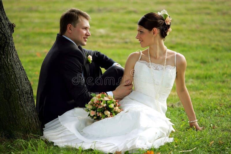 Coppie del Newlywed nell'amore fotografia stock libera da diritti