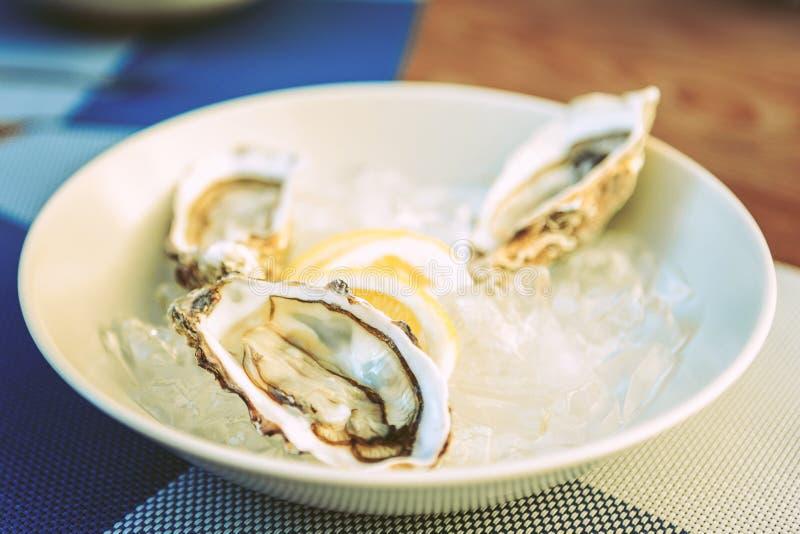Coppie delle ostriche fresche disposte sul piatto ceramico bianco immagine stock