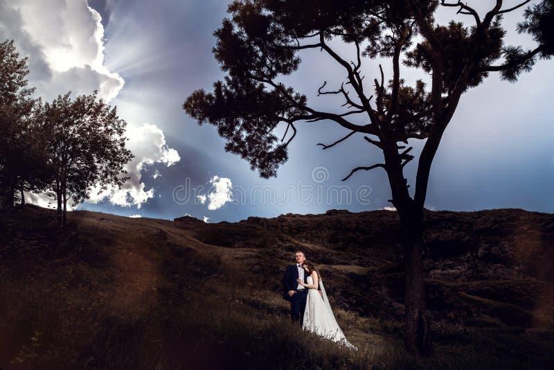Coppie di cerimonia nuziale bello sposo della sposa fotografia stock