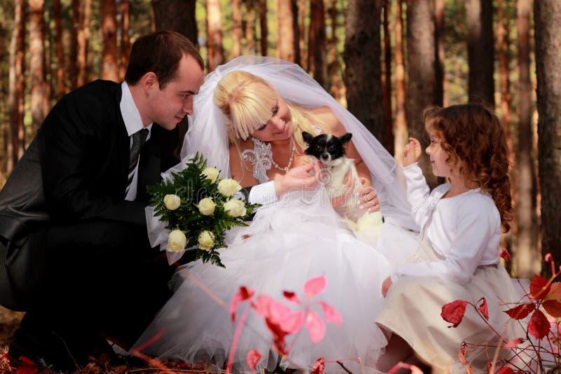 Coppie di cerimonia nuziale, ragazza e piccolo cane esterni immagine stock