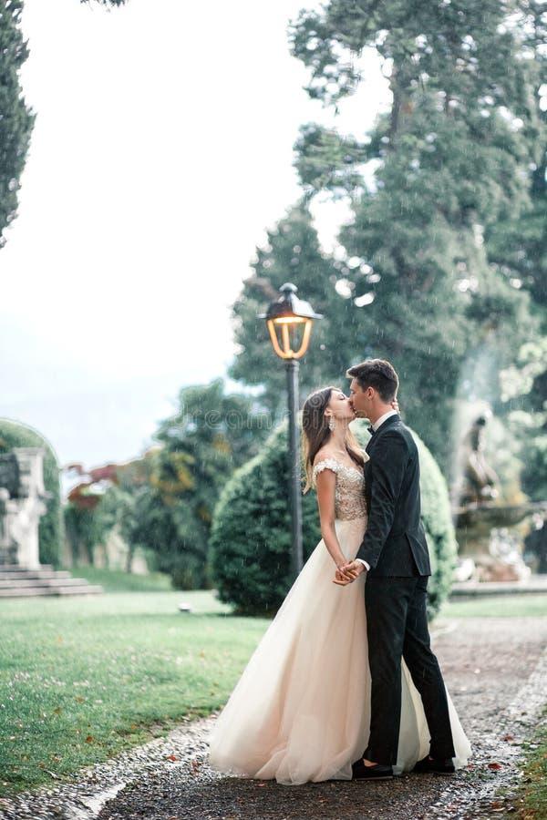 Coppie di nozze che baciano nel parco nella pioggia immagine stock libera da diritti